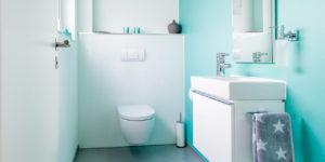 cv_toilet