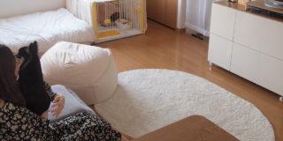 【こだわりの部屋づくりvol.11:後編】 カラーは持っている家具に合わせて、小物はペット優先で選ぶ(ももこさん)