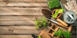 gardening_i1