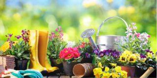 gardening_icatch