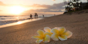hawaii_beach
