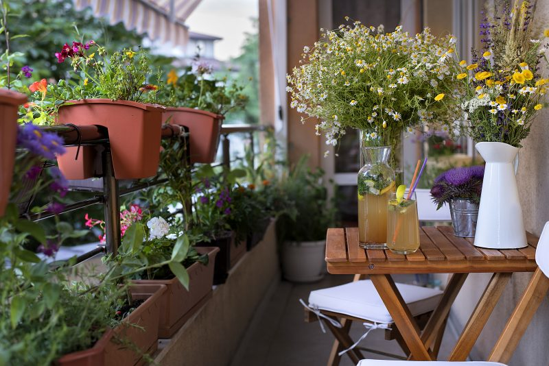 好きな花を育てるバルコニー