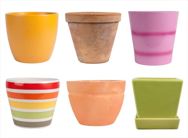 ペイントされていたり個性豊かな陶器や磁器