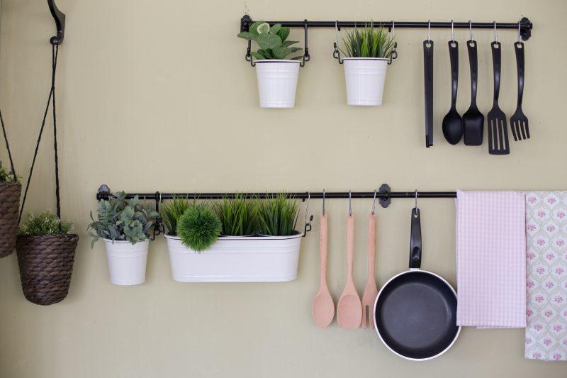 キッチンや食卓には小ぶりの「多肉植物」がおすすめ