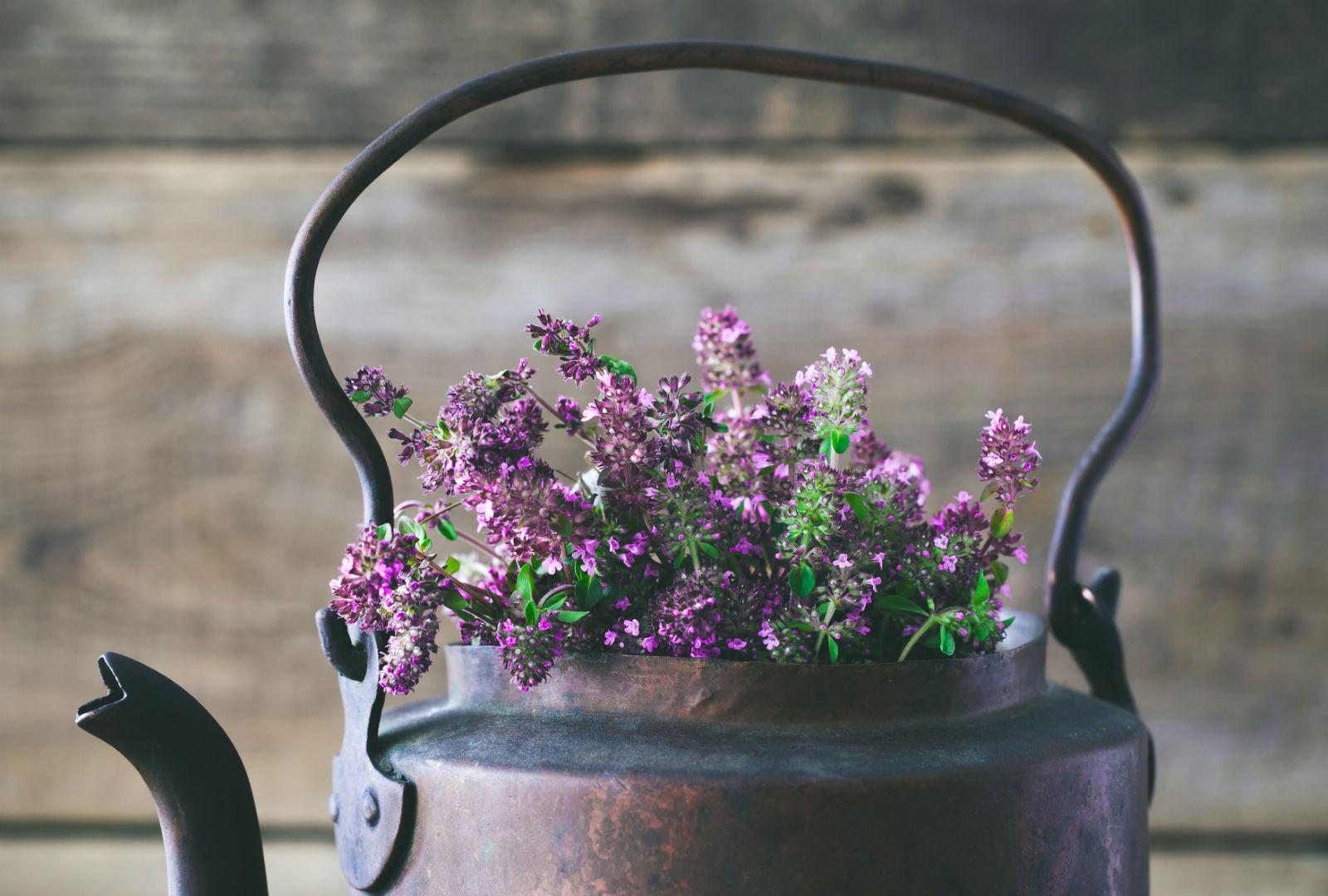 錆びた風合いのティーポットに花が生けられているイメージ。