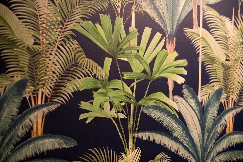 南国植物柄の壁紙