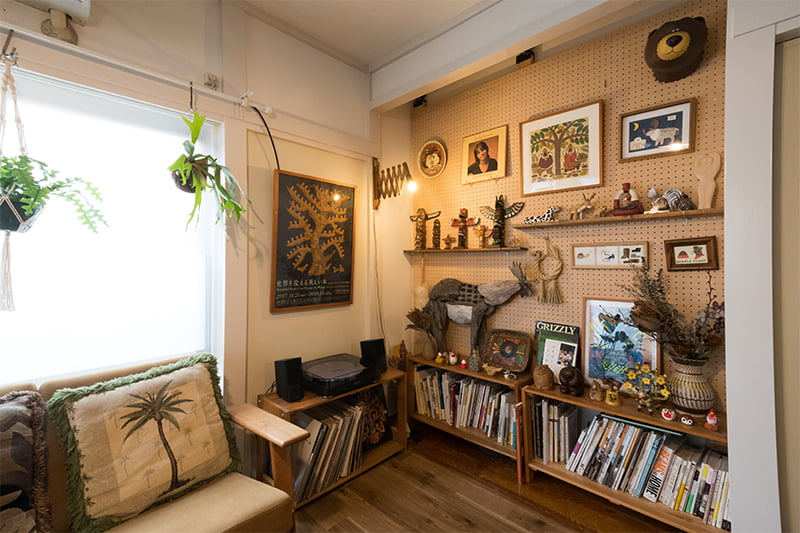 コレクションと観葉植物