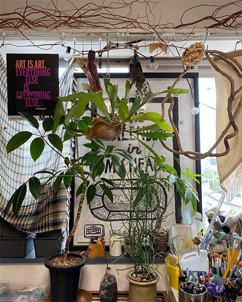 部屋に飾った植物