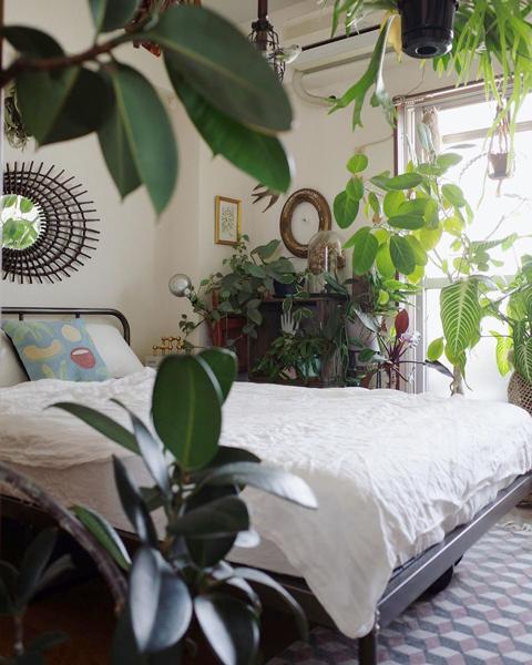 植物に囲まれたベッドルーム