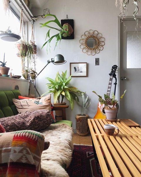 植物愛にあふれた部屋