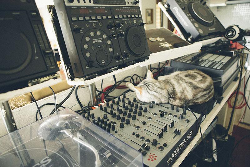 DJブースは猫ちゃんお気に入りの昼寝スポット