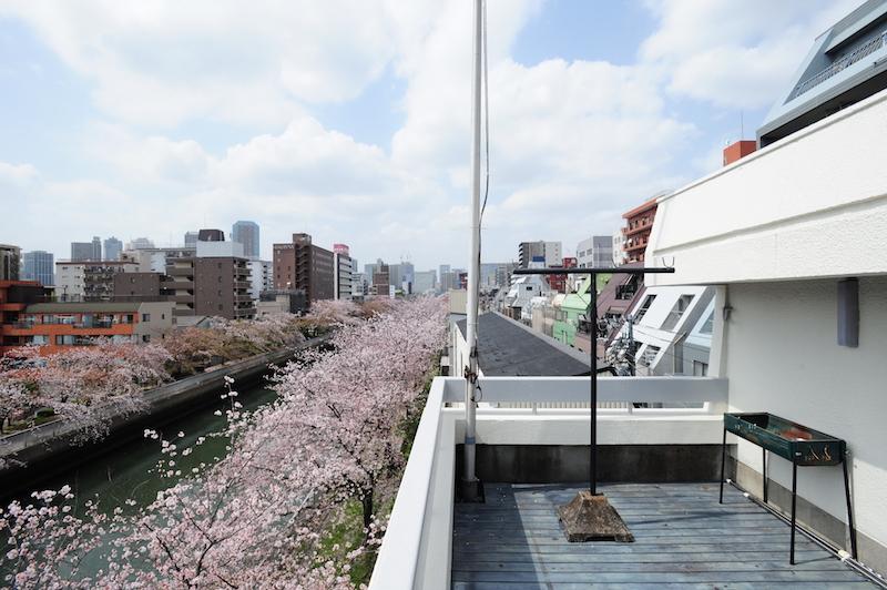 桜並木を独り占めできる開放的なテラス